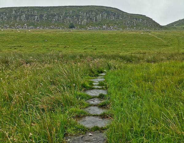 Heading North from Hadrian's Wall on the Pennine Way