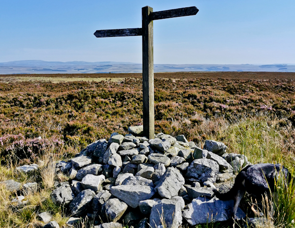 Whitley Pike, Pennine Way Day 14