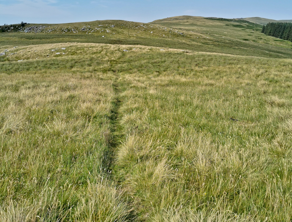Cheviot Hills - Byrness - Pennine Way