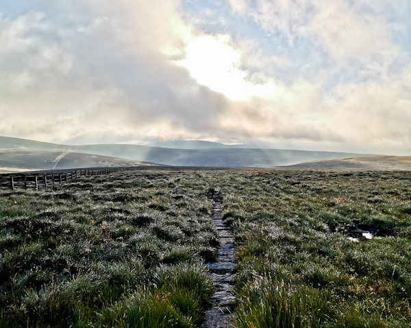 Windy Gyle - Pennine Way Stage 15