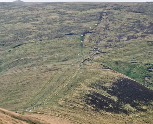 Ups and Downs in the Cheviots