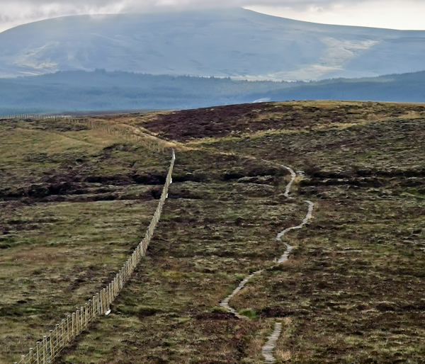 Pennine Way Final Stage - The Cheviot