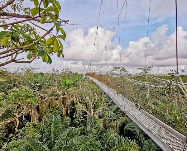 Canopy Walk, Lekki Conservation Centre